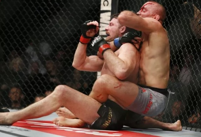 48 Best MMA images | Mma, Ufc, George st pierre